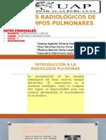 Campos Pulmonares
