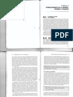 Capitulo 8 Establecimiento de l a Agenda, Priming y Framing Medios de Comunicación y Opinión Pública D'Adamo