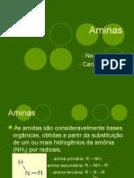 aminas-120821182302-phpapp02