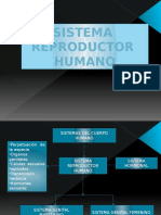 sistemareproductorhumanoexpo-100111190202-phpapp01
