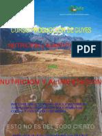 92334835 Curso Sobre La Nutricion y La Alimentacion de Los Cuyes WWW PERU CUY COM