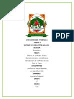 Portafolio de Evidencias(Bioquimica)u5.