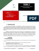 201202131422341.TEMA 7 ENVIADO PDF POR LIDIA.pdf