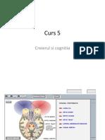 Curs_5_pdf.pdf
