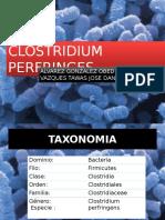 clostridiumperfringens-140501171329-phpapp01
