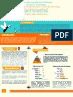 POSTER-ORIGINAL-FINAL-PDF.pdf