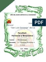 Infecciones Gastrointestinales Monografia Terminado
