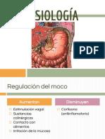 ssssssssstomago.pdf