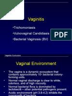 Vaginitis Slides 100309071432 Phpapp02