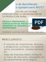 Marco Jurídico de Las Figuras Jurídicas Para La