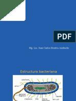 2-Estructura bacteriana.