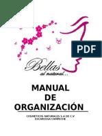 98985301-Manual-de-Organizacion-Nuevo.docx