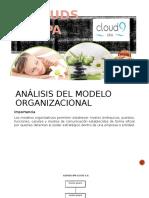 Analisis Del Modelo Organizativo