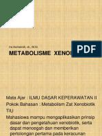 metab xenobiotik