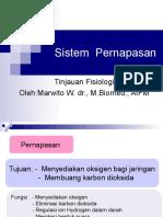 Sistem  Pernapasan.ppt