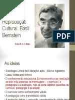 Códigos e Reprodução Cultural