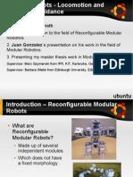 Locomoción de Robots ápodos modulares. Robotics Lab. UC3M