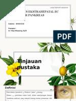 CA Caput Pankreas