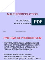 Male Reproduction.pptx