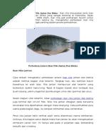 Perbedaan Antara Ikan Nila Jantan Dan Betina (Artikel)