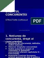 Dr Concurentei_structura Curs