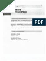 Administração Nos Novos Tempo 2 Edição CHIAVENATO - CAPITULO 3