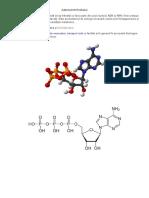 Adenozintrifosfatul