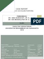 Case Besar