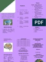 Folleto Diplomado Evaluación y Diagnostico Neuropsicológico 2016 CEV
