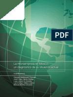 ve_microempresaenmexico.pdf