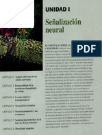 Neurociencia, capitulo 2 OCR