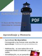 clase11aprendizajeplasticidadcerebral-110328231343-phpapp01