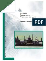 Acuerdos Internacionales en Relacion a La Produccion Limpia