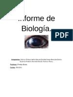 Informe de Biología Diciembre 2016