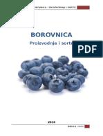 Borov Nica