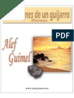 Reflexiones de Un Guijarro -Alef Guimel