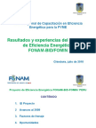 Proyecto FONAM BID CIP_Chimbote Juilo 2010