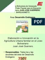 Proyecto de Desarrollo Endógeno (LICEO)