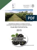 Plan Rector s.p. Zarzamora 2015