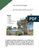 Flora y Fauna de Sonora