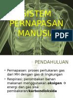 FIX Sistem Pernapasan Manusia
