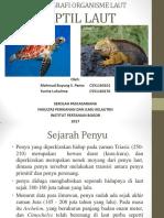Reptil Laut