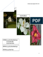 3Angiospermasbasales-Magnolideas-Monocotiledoneas (1).pdf