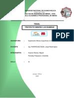 235995637-Proyecto-Minero-Las-Bambas.pdf