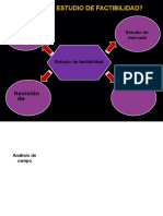 estudiodefactibilidad-110805174330-phpapp02