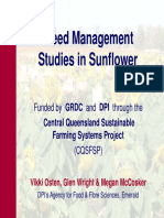 Weed Mangement Studies in Sunflower