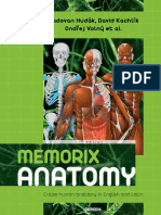 Memorix Anatomy - Sample.pdf