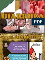 mules diare.pdf