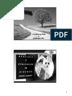 ANALISIS Y EVALUACION DE RIESGOS   OCT 10.pdf