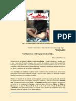 Venezuela Es Una Quinceañera